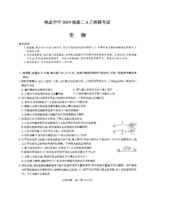 《KS5U发布》河南省焦作市2021届高三下学期4月第四次模拟考试 生物 Word版含答案bychun
